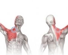 Боль в плечевом суставе при поднятии руки в сторону — лечение