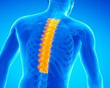 Причины боли в позвоночнике посередине спины: методы лечения и устранения боли
