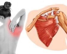 Причины болей в спине в области лопаток