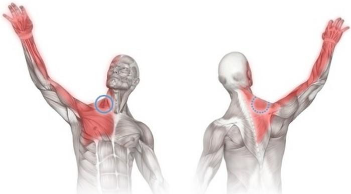Боль в плечевом суставе при поднятии руки в сторону - лечение