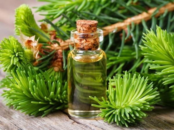 Хорошо помогают эфирные масла хвойных деревьев