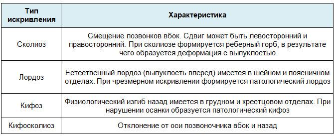 Типы искривления позвоночника